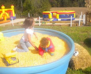 kids playing in tub of corn